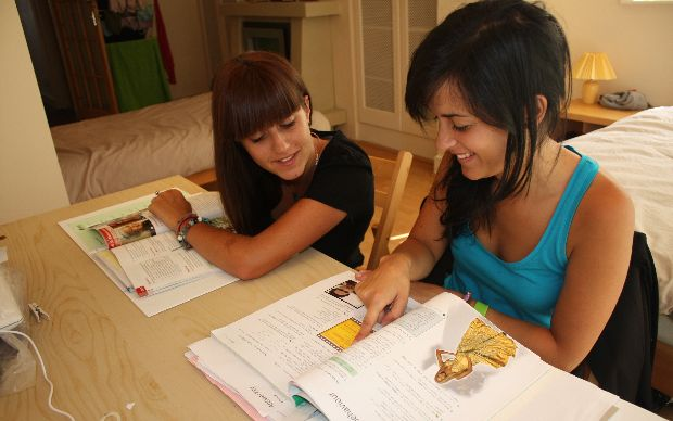 biography example essay with family problem